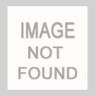 601084 SPJA5 / 1461 MULTI / Kid Girl Weather and Fringes Sweatshirt