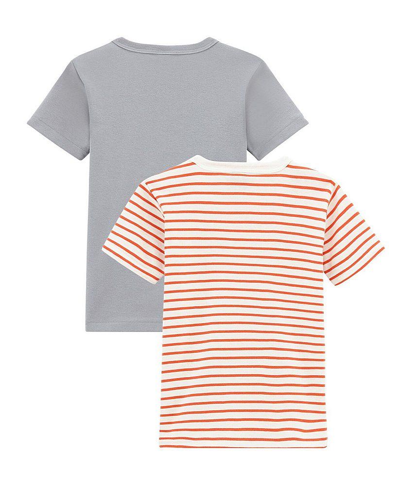 44613 / MULTI / Grey/Orange Striped T-Shirt